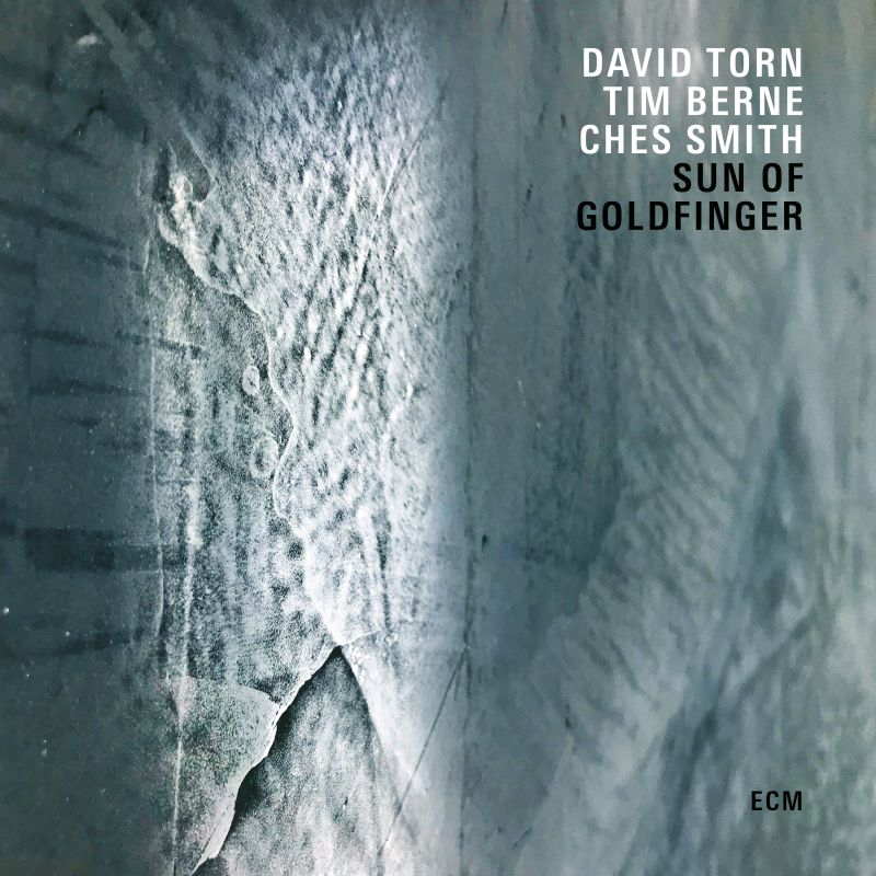 David Torn/Tim Berne/Ches Smith